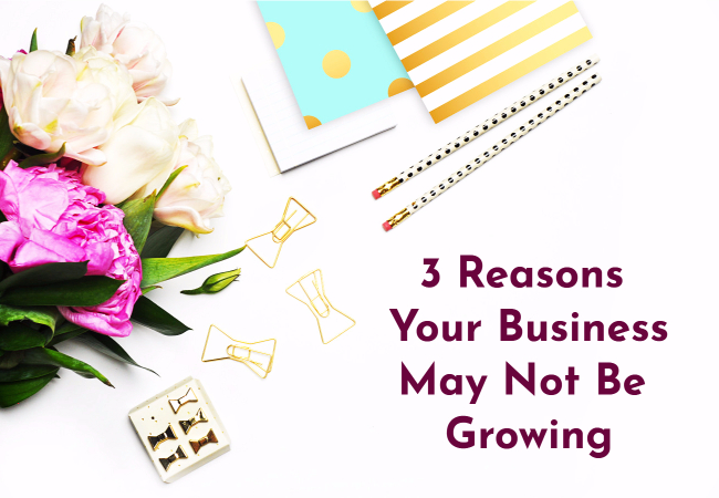 3 Reasons Why Your Online Biz Isn't Growing